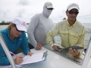 Bonefish measurements recorded in Cross Harbor.