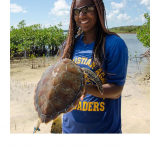 Whitney out with the turtle team.