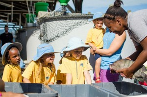 Students from the Early Learning Center learn about tilapia from Whitney.