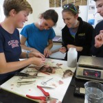 Students learning about the anatomy of the invasive lionfish with Alicia Hendrix, CEI's research technician for the sustainable fisheries program.