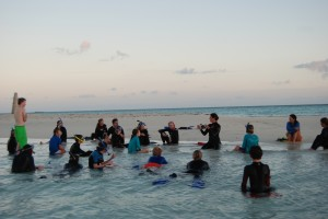 Early morning snorkely and marine ecology class on the sandbar