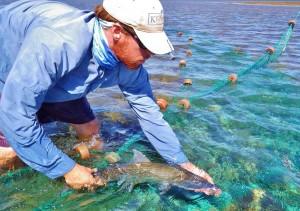Eric Schneider bonefish