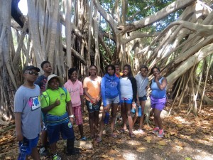 The whole group at the banyan tree