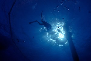 Diver Silloette