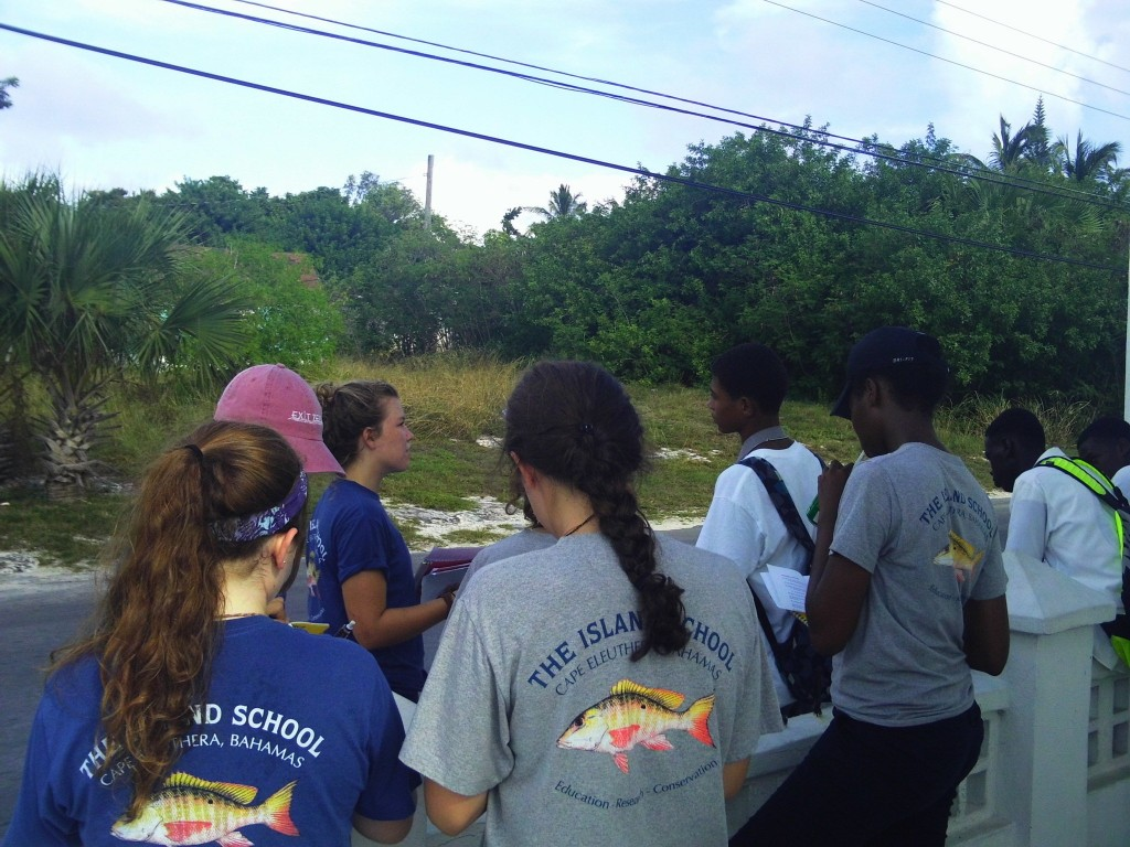 Island School Students teach local teens about sea turtles