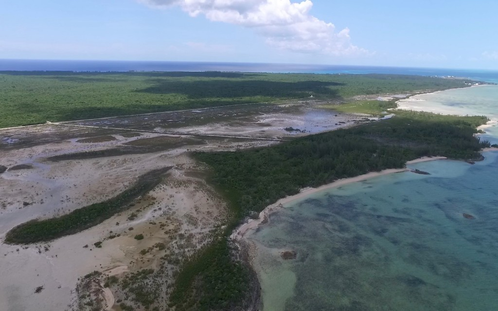 South Eleuthera offers the only mangrove creek systems on the Island - here shows Kemps Creek which borders the Grand Bahama Bank.