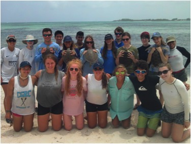 Sea Turtle research interns and Earthwatch volunteers after a successful day of tagging in Winding Bay